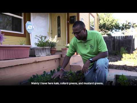 Community Focus Stories